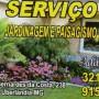 adao-gomes-jardinagem-paisagismo